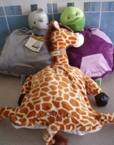 back-bum-hippo-tortoise-giraffe