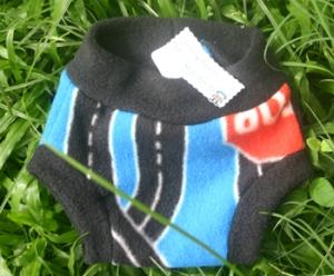 fleece-shorts_350