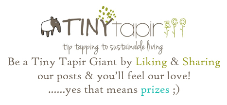 Tiny Tapir Eco Fan page